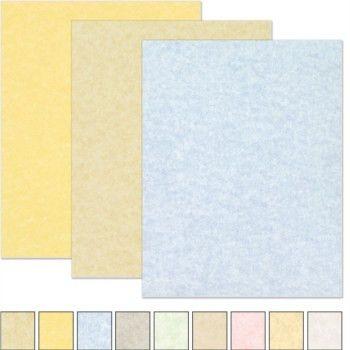 colored resume paper node2002-cvresumepaasprovider