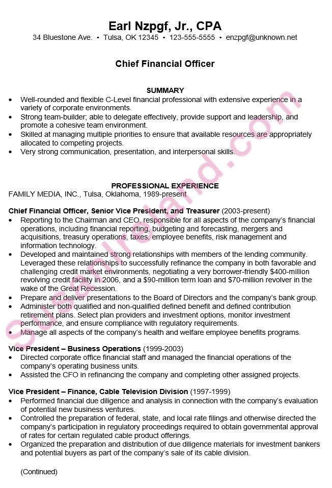 Sample Cio Resume cio resume 6 cio resume sample executive sample - cto resume examples