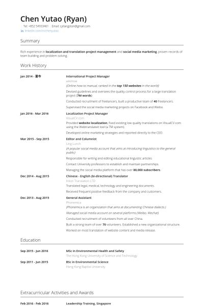 It Project Manager Resume Examples Unforgettable Technical
