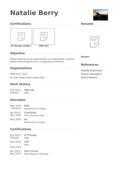 sample lvn resume