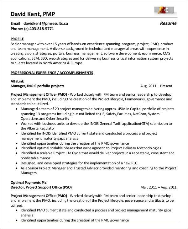 project management resumes samples node2002-cvresumepaasprovider
