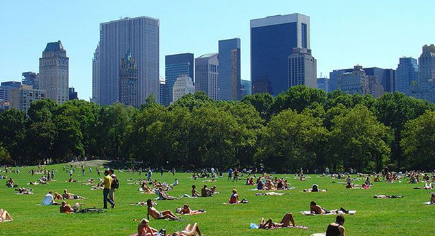 Sure, New York is the home of the $100+ hamburger and the $1,000+ baseball game. But there's also no other city in the world that offers more first-rate freebies on a daily basis. From famous paintings to gorgeous green spaces, classical music to stand-up comedy, welcome to free NYC!