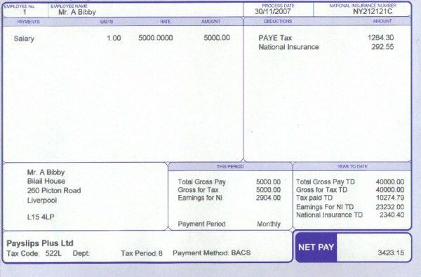 Wage Slip Template Free Uk Payslip Template Download Free Uk