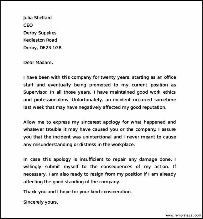 Business Apology Letter For Mistake 8 Letters Of Mistake Sample - work apology letter example