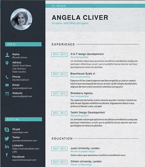 Sample Web Designer Resume Web Designer Cv Sample Example Job - web resume examples