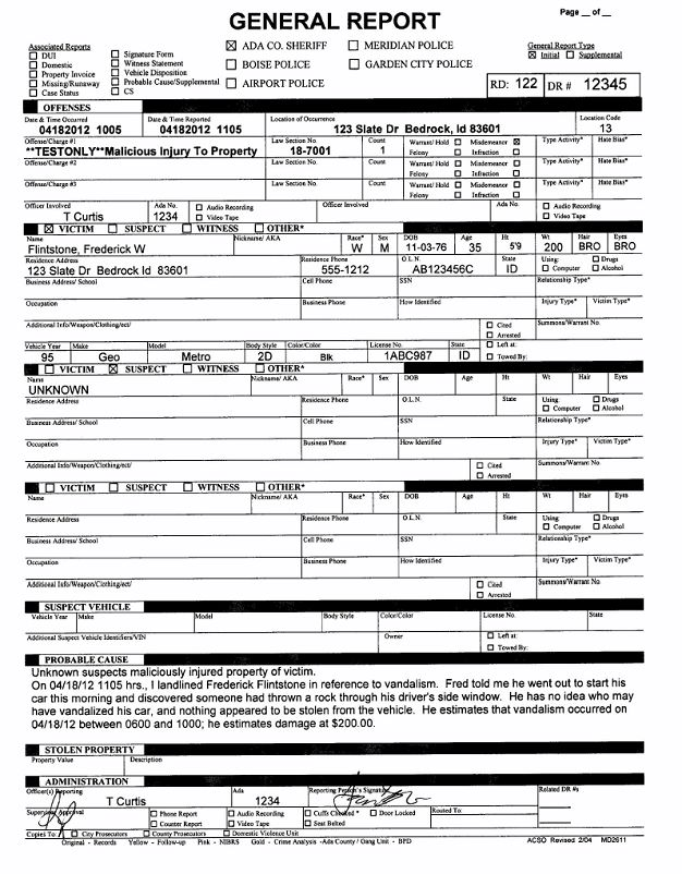 ... Criminal Report Template Sample Crime Report 11 Documents In Pdf   Crime  Report Template ...  Criminal Report Template