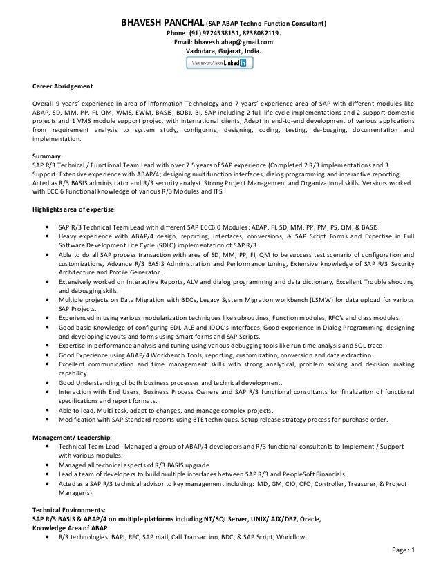sap b1 consultant resume