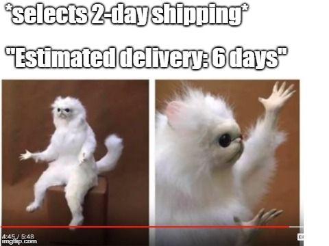 30 Funny Amazon Memes That Are Pretty Prime -