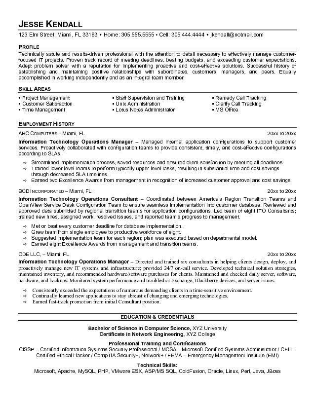 It Manager Sample Resume It Manager Resume Example It Director