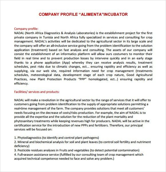 Sample Company Profile Format In Word Sample Company Profile - company profile format