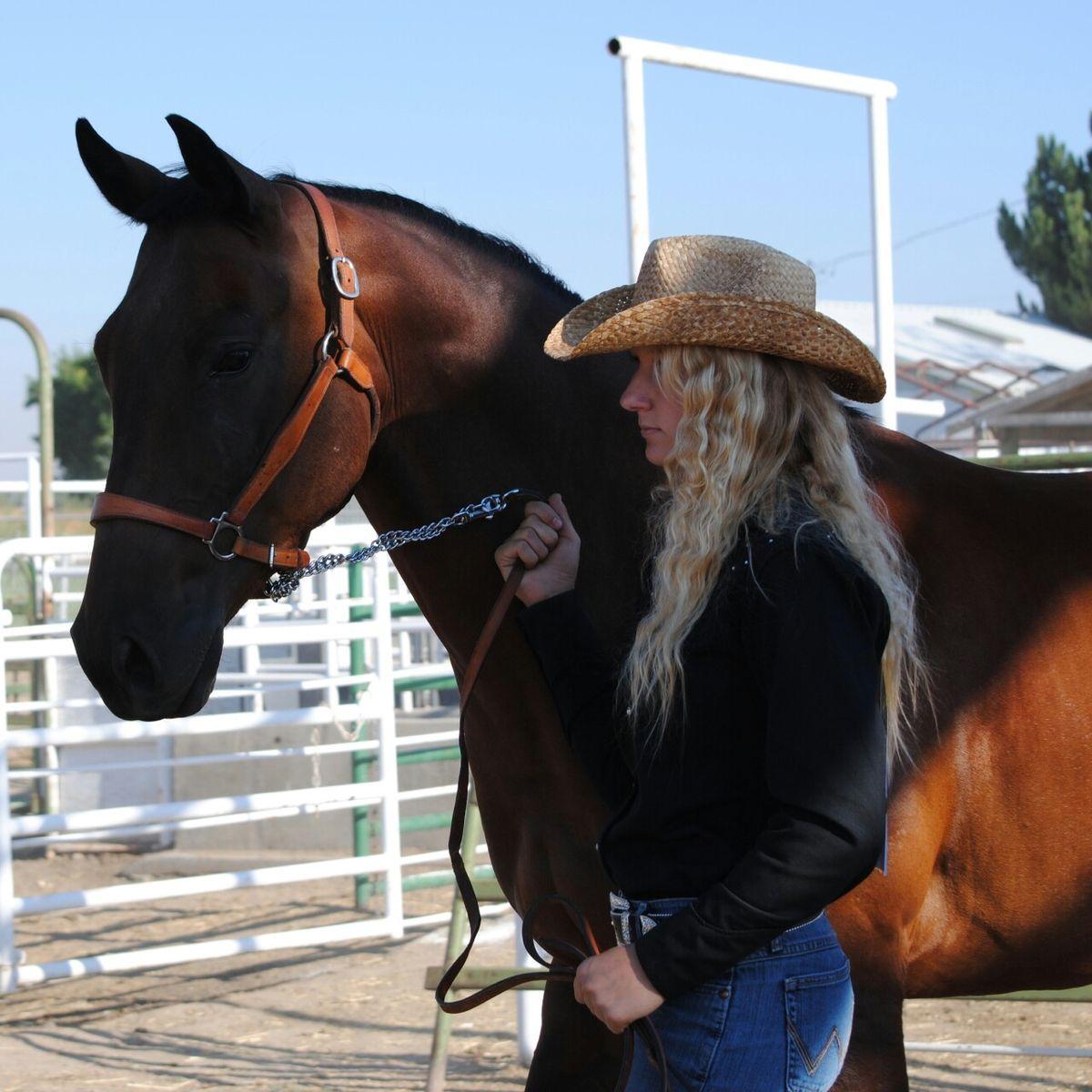 4h horse showmanship Horses, Beautiful, Showmanship
