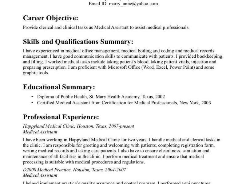 Certified Legal Nurse Resume Legal Nurse Consultant Jobs The - medical professional resume