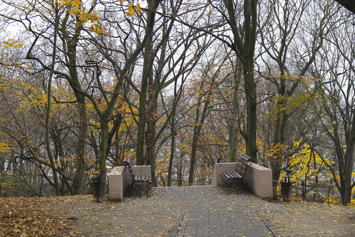 В парке (г. Пионерский). Фото: Evgenia Shveda