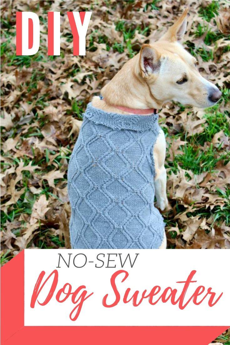 DIY No-Sew Dog Sweater