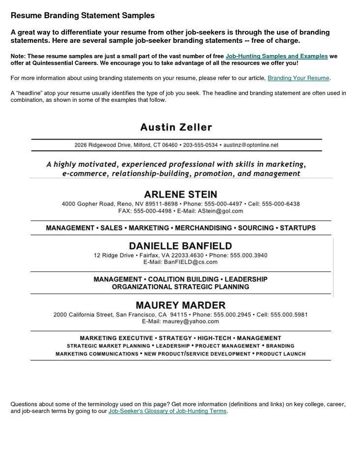 Beaufiful Examples Of Profile Statements For Resumes Pictures  Resume Profile Statement Examples