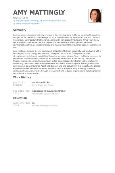 Sample Insurance Resume Manager Resume Example Insurance Manager