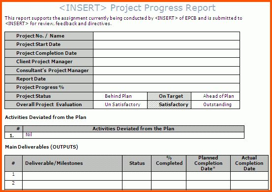 Exelent Monthly Project Report Template Gallery Resume Ideas