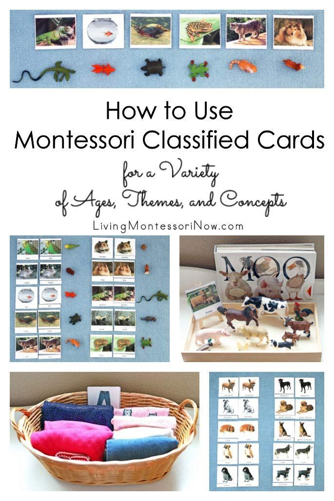 How to Use Montessori Classified Cards for a Variety of Ages, Themes, and Concepts