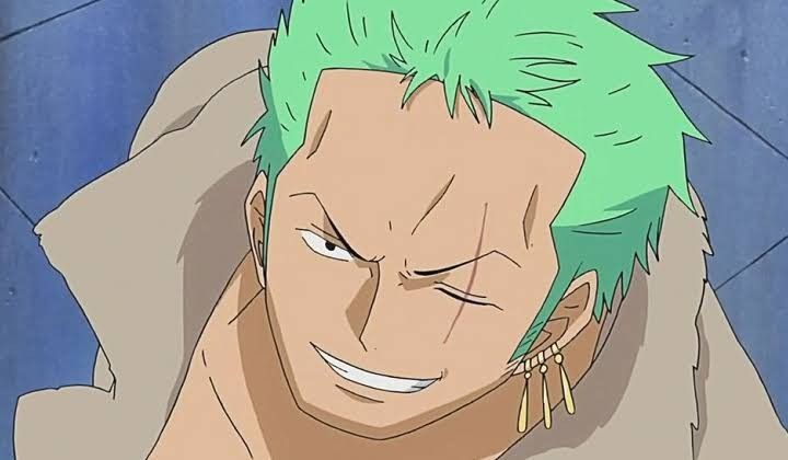 Roronoa Zoro leave Strawhat pirates