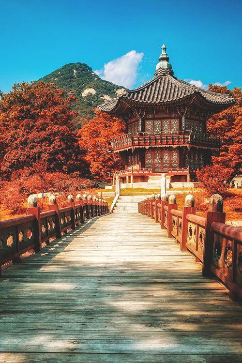 wnderlst:  Seoul, South Korea | Damian Bere
