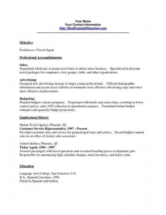 Sample Travel Agent Resume Example