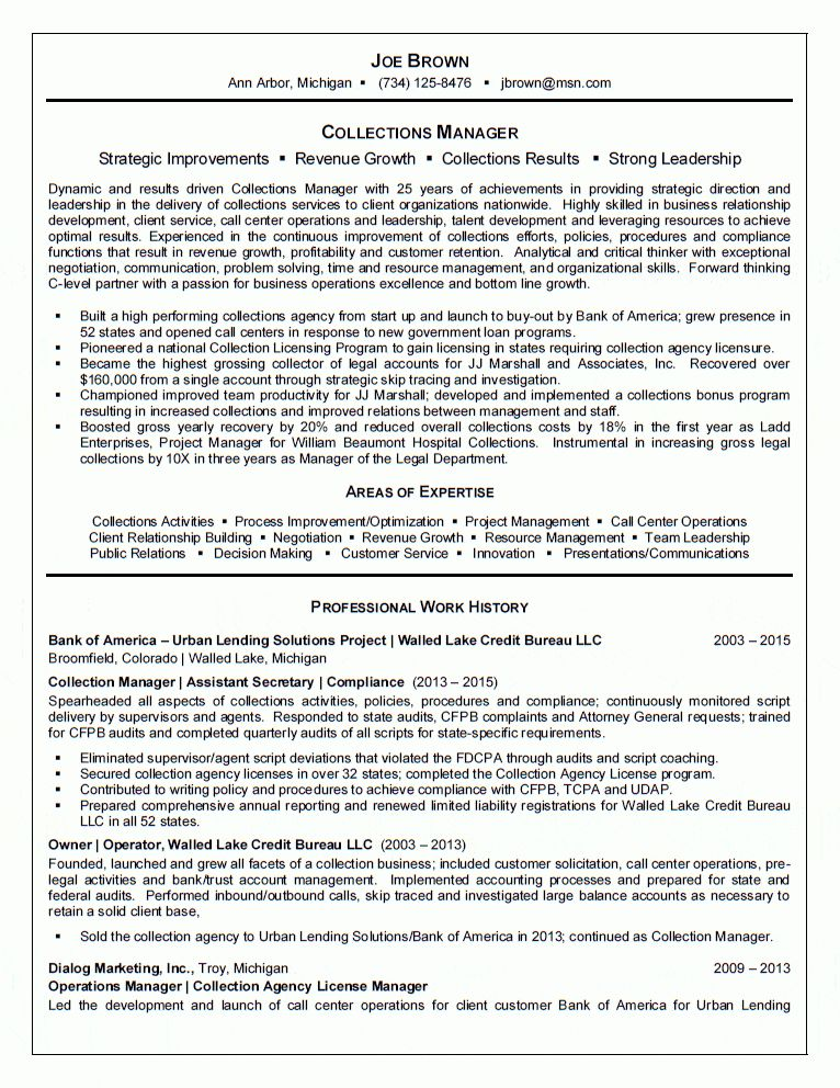 Revenue Agent Sample Resume Tax Examiner And Collector And Revenue