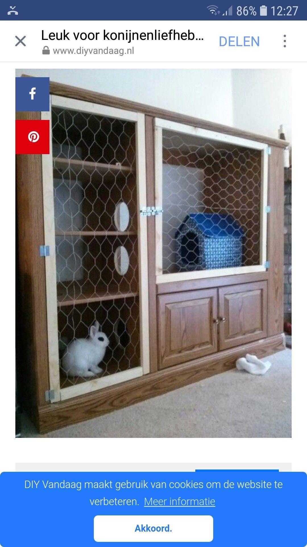 Pin On Prairie Dog Cage