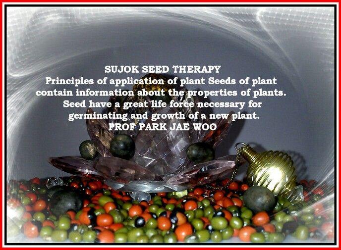 Sujok Seed Therapy Prof. PARK JAE WOO saroj_sp Sujok Saroj ...
