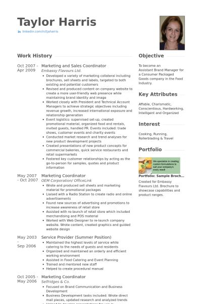 sales administrator resume