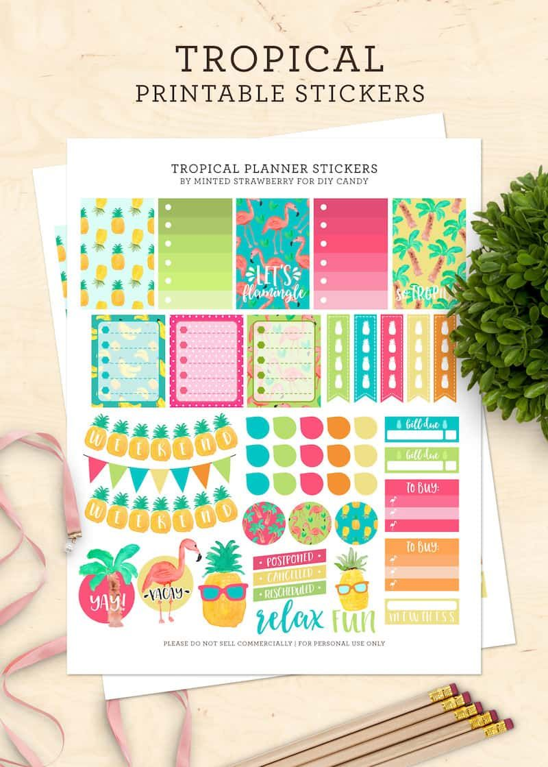 Tropical Printable Planner Stickers