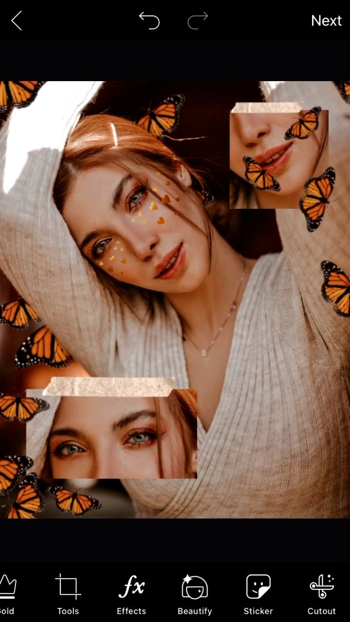How To Create A Butterfly Aesthetic Edit With PicsArt 🦋✨
