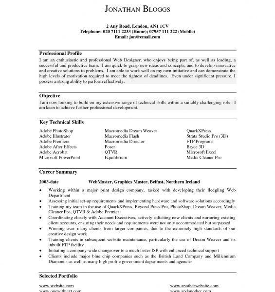 Profile Summary Resume Examples Profile Section Of Resume Example - professional summary for cv