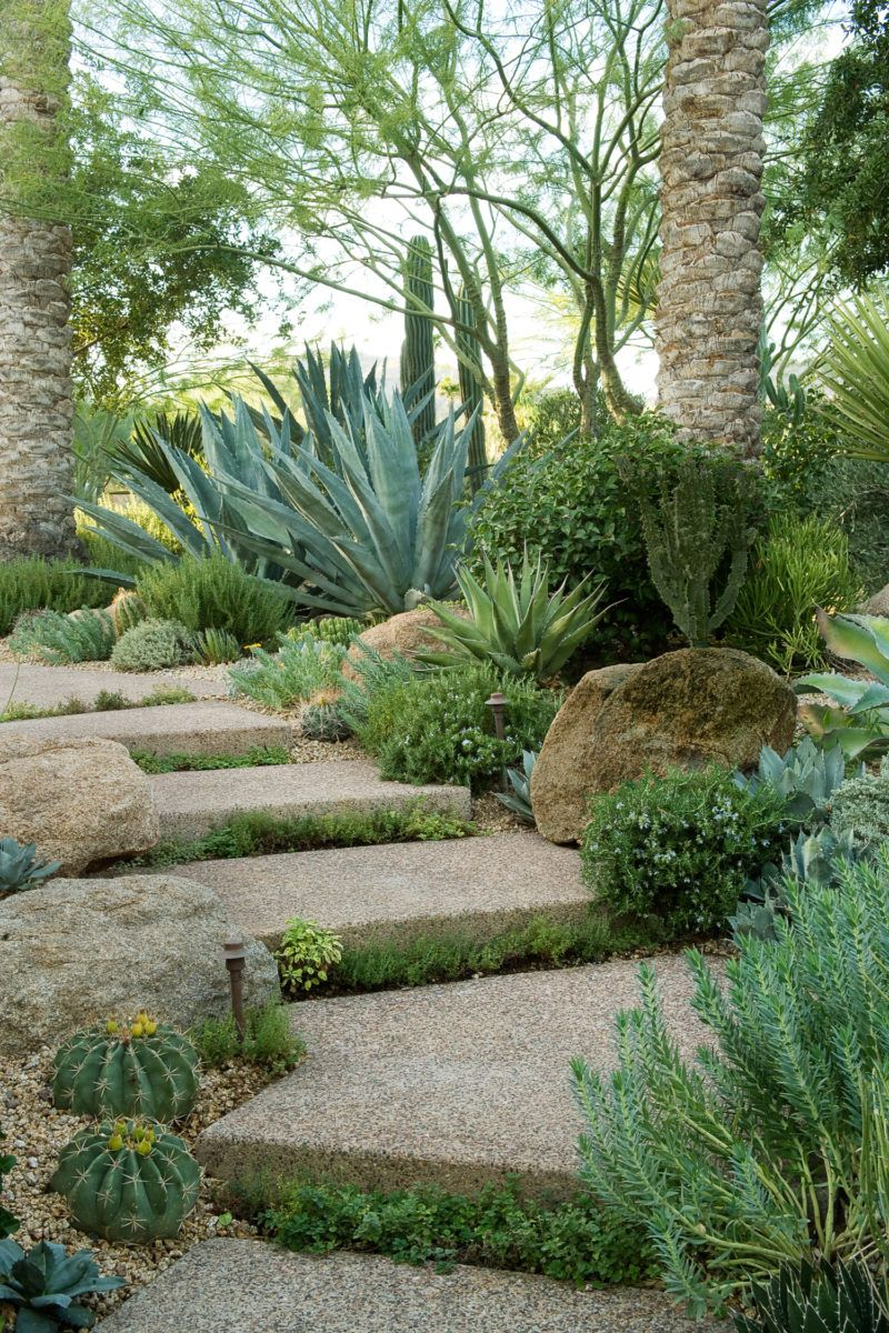 Make a park out of a path. This entry path feel more like a nature trail than a garden walk. Thyme grows between steps; boulders, cactus, and rosemary fringe the path's edges.