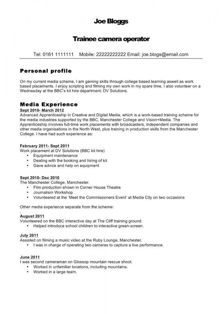 examples of personal profiles for resumes 11 personal profile