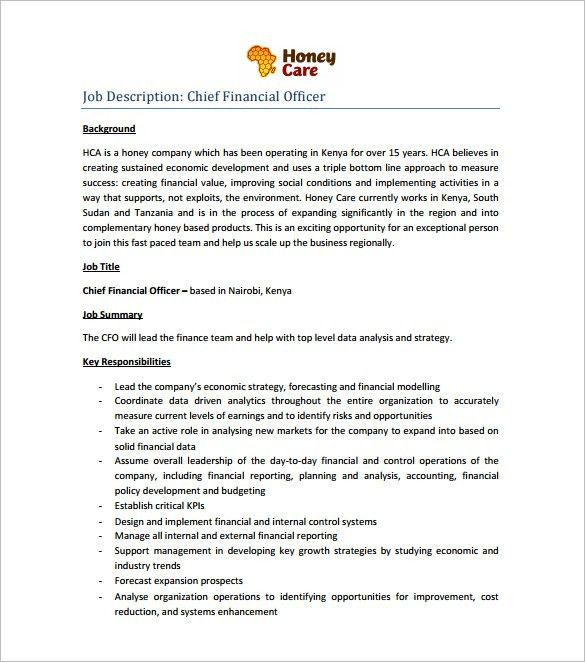 chief financial officer resume