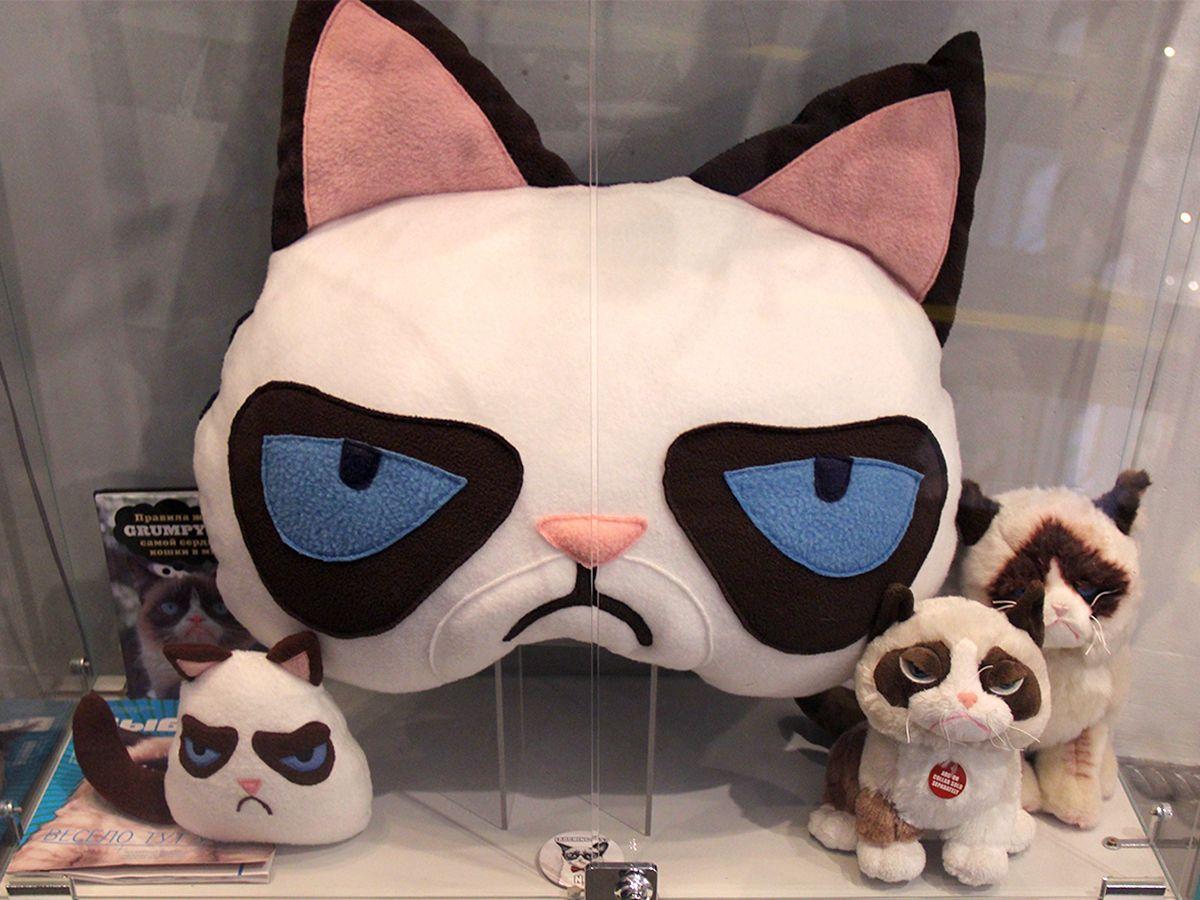 Интернет-мем «Сердитая кошка» в музее «Мурариум». Фото: Evgenia Shveda