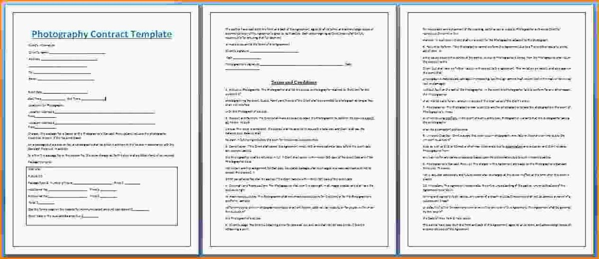 Wedding Planning Contract Templates Fill Online Sample Wedding - wedding contract template