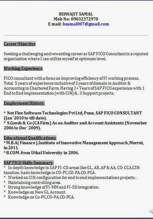 Sap Fico Resume Sample Templates Bus Driver By Machine