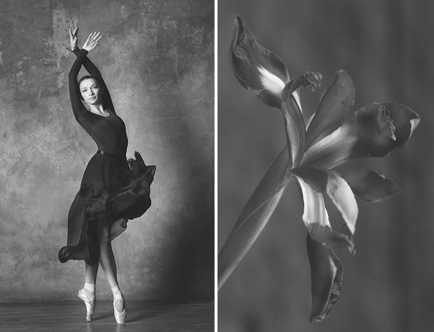 Photographer Captures The Stunning Movements Of A Ballerina And Compares Them With Flowers