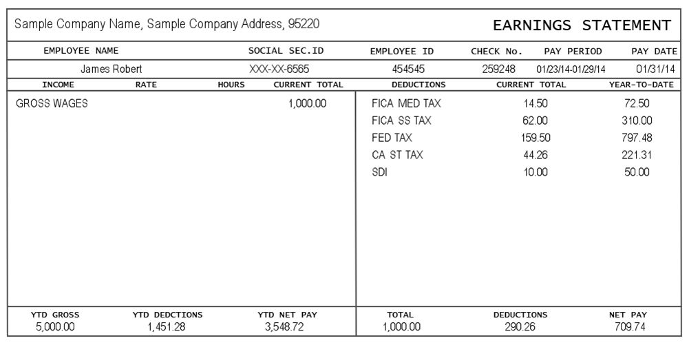 Pay Stub Template Word Download A Free Pay Stub Template For - pay stub format