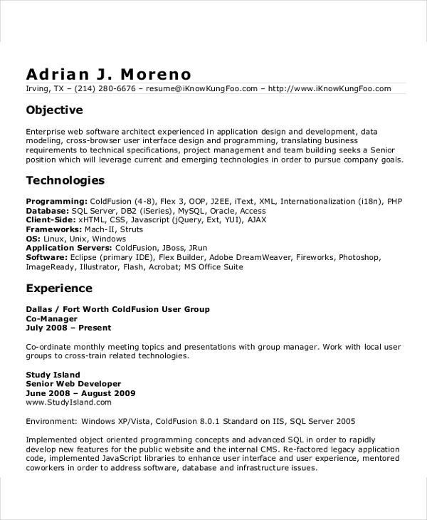 software developer resume format - Baskanidai