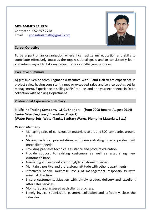 engineering executive resume env 1198748 resumecloud