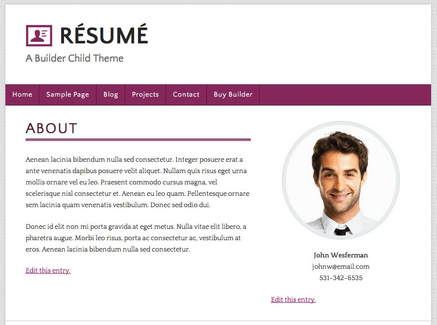 Resume Website Examples 20 Creative Resume Website Templates To