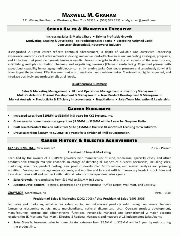 Sales Executive Resume Example - Examples of Resumes - sales executive sample resume