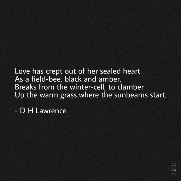 Pin By Janine On Prose Poetry Words Elegant Words D H Lawrence