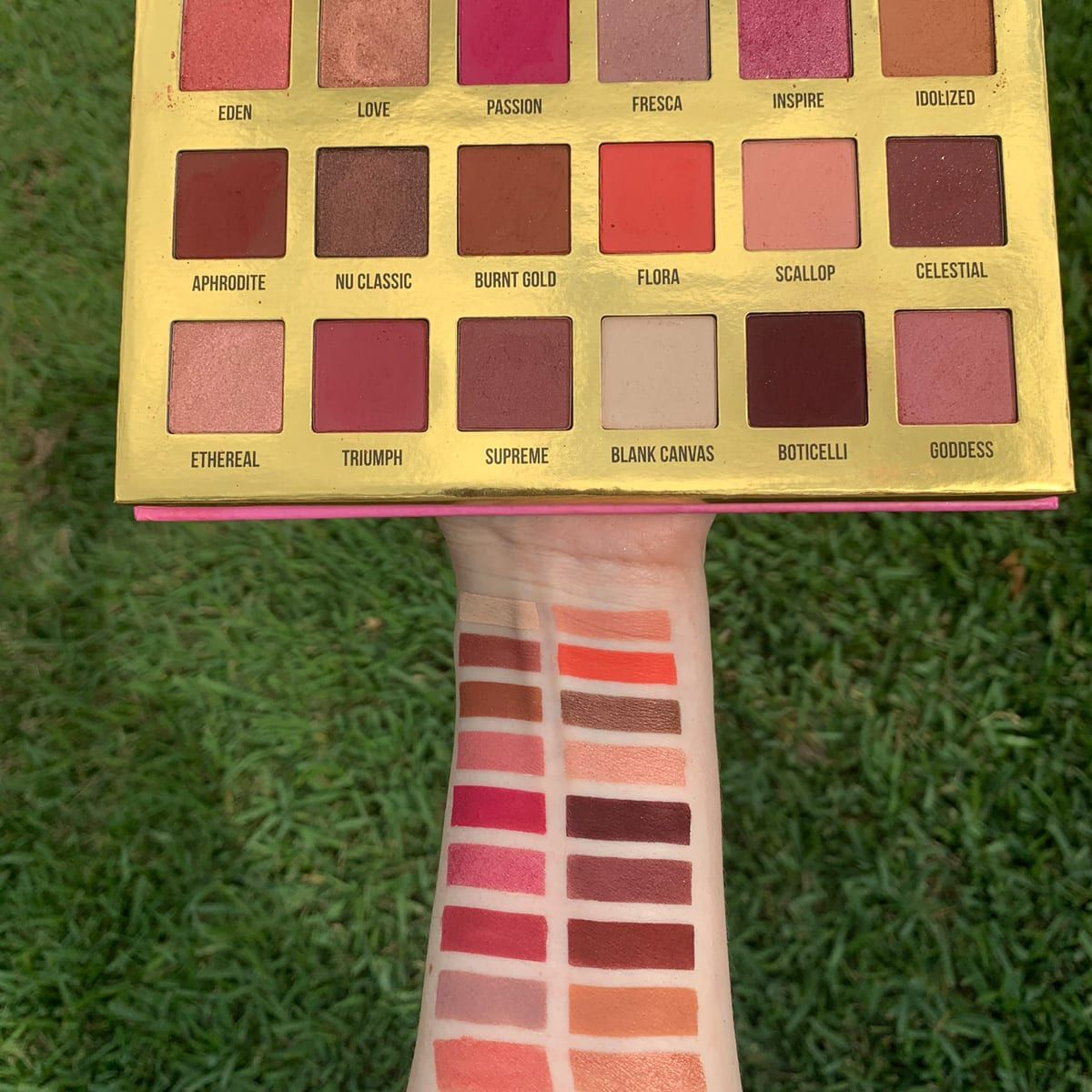 Lime Crime Venus XL Palette swatched on fair skin