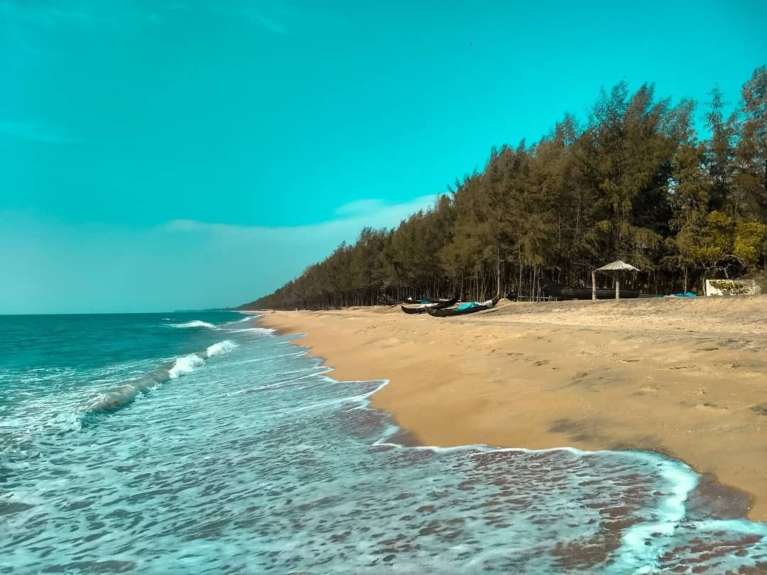 North Avoca Beach | Places, Outdoor, Beach