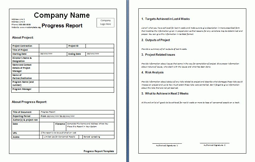 Weekly Project Report Template Weekly Status Report Template 12 - job progress report