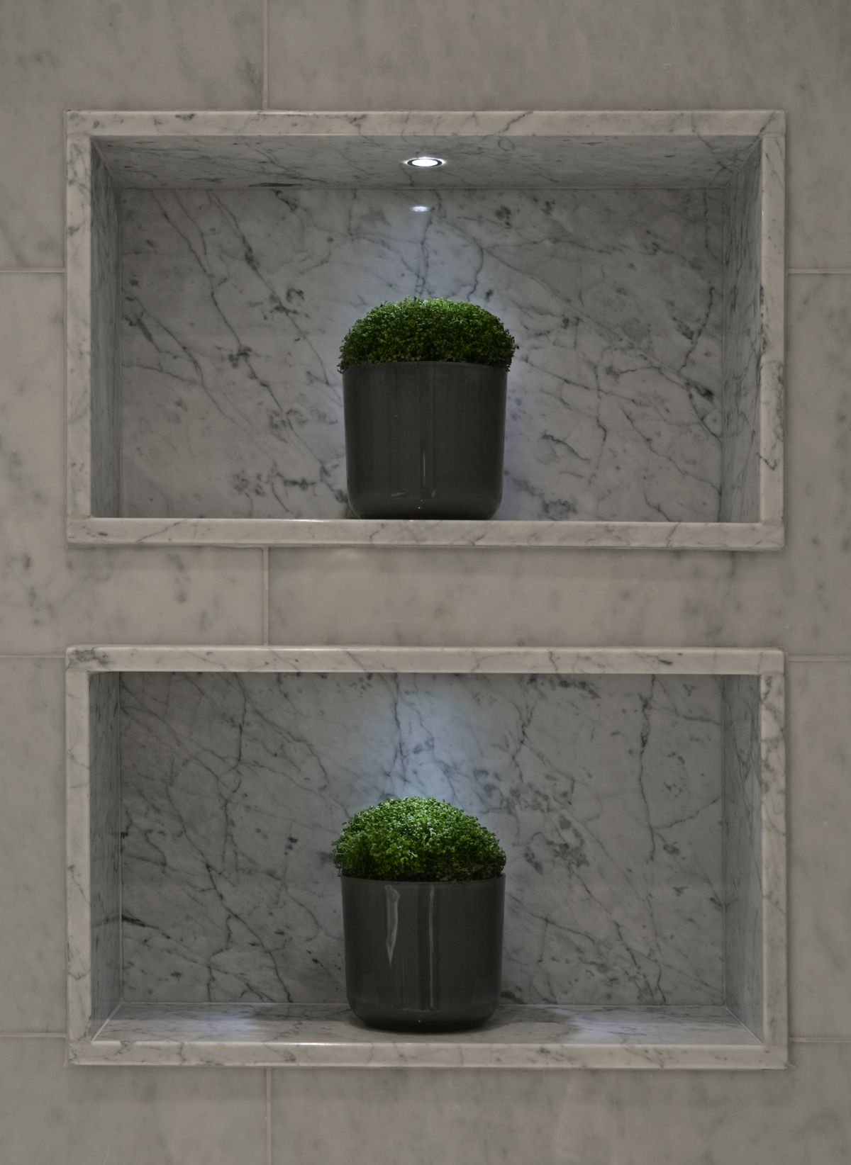 1000 Images About Shampoo Niche On Pinterest Recessed