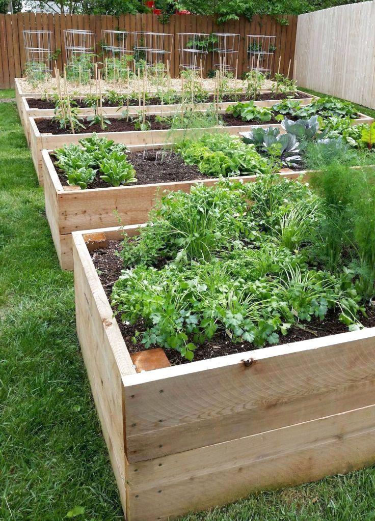 ✔80 Favourite DIY Vegetable Garden Design Ideas #VegetableGarden